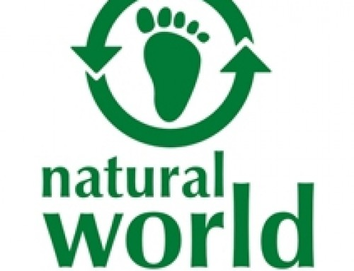 Natural World eco friendly shoes